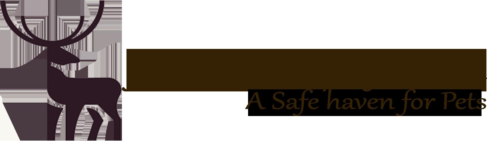 jamaicaswampsafari.com
